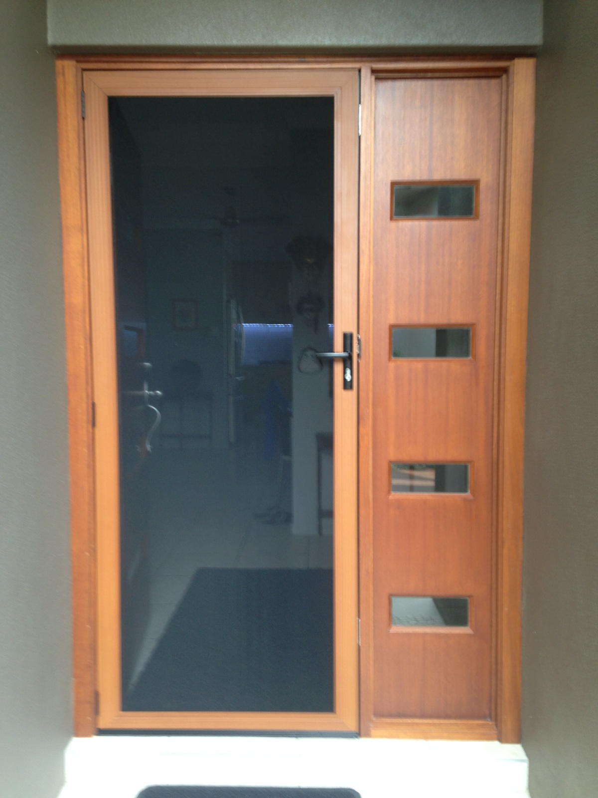 Secureview Door with Timber look Frame